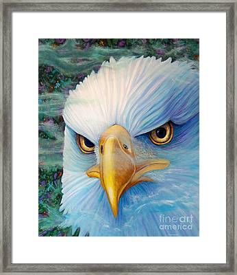 Focus Framed Print by Brian  Commerford