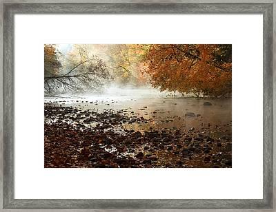 Fog And Color Framed Print by Amanda Kiplinger
