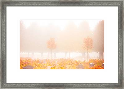 Fog Swept In Framed Print by Maggie Terlecki