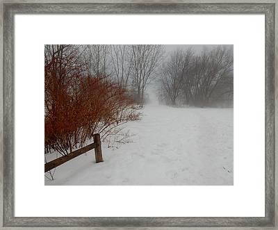 Foggy Day Framed Print by Betty-Anne McDonald