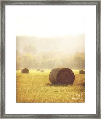 Foggy Morning Framed Print by Tamyra Ayles
