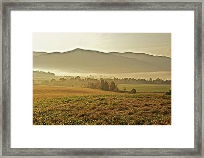 Foggy Valley Framed Print by Michael Peychich
