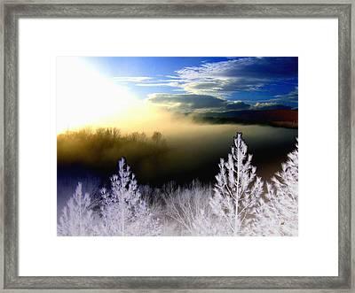 Foggy Winter Sunset Framed Print by Will Borden