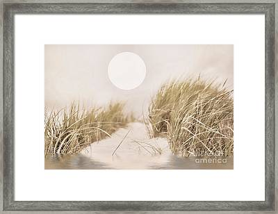 Follow Me Framed Print by Mindy Sommers