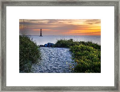 Follow Me Framed Print by Steve DuPree