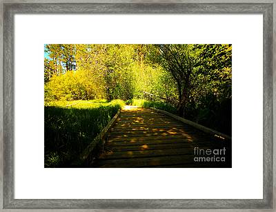 Follow The Path Framed Print by Cheryl Young