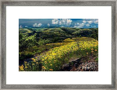 Follow The Path Framed Print by Tamyra Ayles