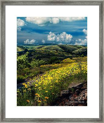 Follow The Path, Vertical Framed Print by Tamyra Ayles