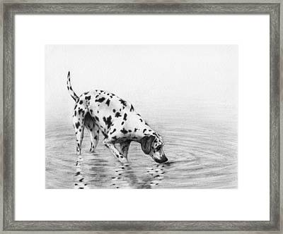 Follow Your Nose Framed Print by Stevie the floating artist