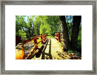 Foot Bridge Framed Print by Cheryl Young