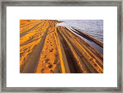 Footpath Framed Print by Susan Irene Richardson