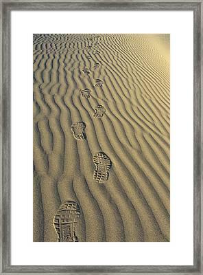 Footprints In The Sand Framed Print by Joe  Palermo
