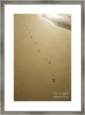 Footprints In The Sand Framed Print by Kicka Witte - Printscapes