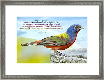 For Every Storm A Rainbow Irish Blessing Framed Print by Bonnie Barry