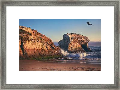 For The Rest Of My Days Framed Print by Laurie Search