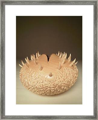 Forbidden Framed Print by Brian Millspaw