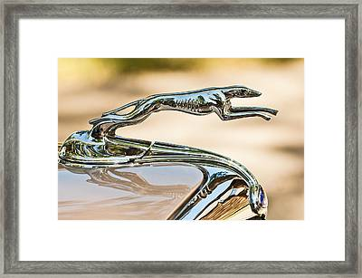 Ford Lincoln Greyhound Hood Ornament Framed Print by Jill Reger