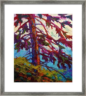 Forest Elder Framed Print by Marion Rose