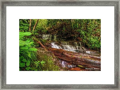 Forest Falls Framed Print by Christopher Holmes