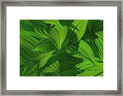 Forest Floor Framed Print by Paul Wear