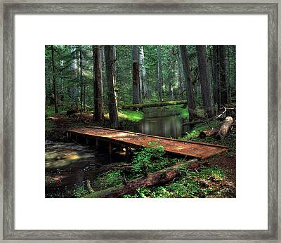 Forest Foot Bridge Framed Print by Leland D Howard