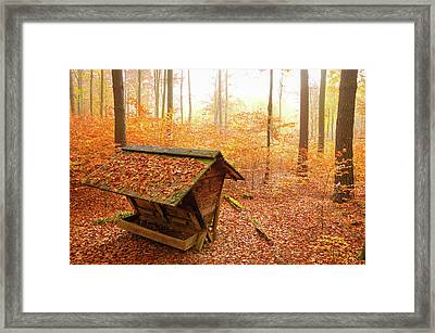 Forest In Autumn With Feed Rack Framed Print by Matthias Hauser