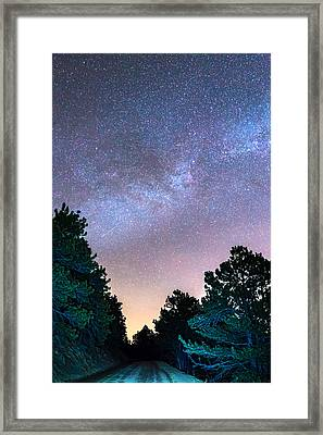 Forest Night Light Framed Print by James BO Insogna