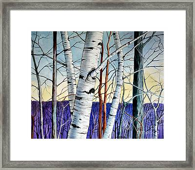 Forest Of Trees Framed Print by Christopher Shellhammer
