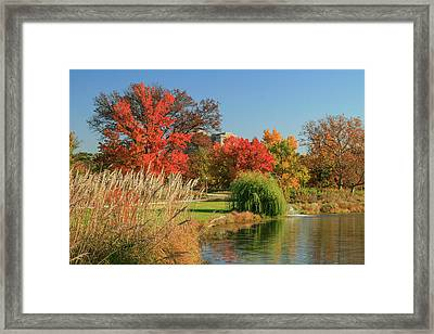 Forest Park Sy Louis Framed Print by Garry McMichael