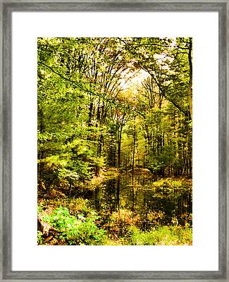 Forest River Scene 3 Framed Print by Lanjee Chee