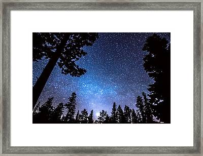 Forest Star Gazing An Astronomy Delight Framed Print by James BO  Insogna