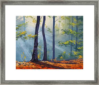 Forest Sunrays Framed Print by Graham Gercken