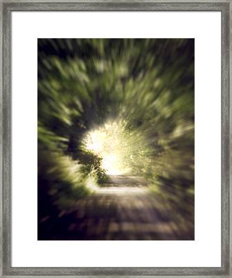 Forest Tunnel Framed Print by Wim Lanclus