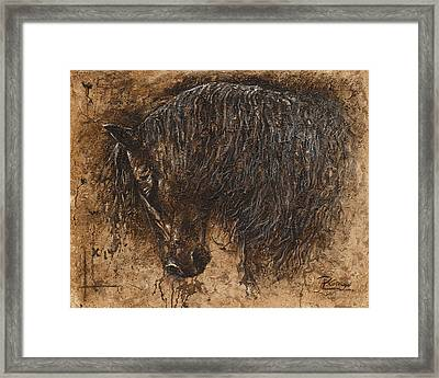 Forgiven Framed Print by Paula Collewijn -  The Art of Horses