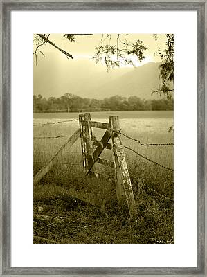 Forgotten Fields Framed Print by Holly Kempe