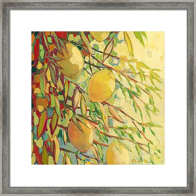 Four Lemons Framed Print by Jennifer Lommers