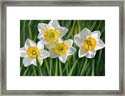 Four Small Daffodils Framed Print by Sharon Freeman