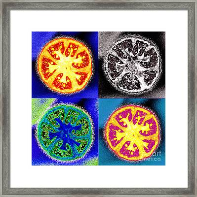 Four Tomatoes Framed Print by Nancy Mueller