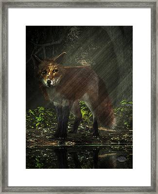 Fox In The Deep Forest Framed Print by Daniel Eskridge