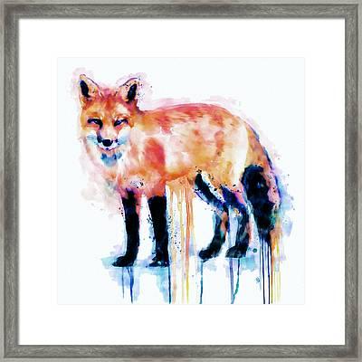Fox  Framed Print by Marian Voicu