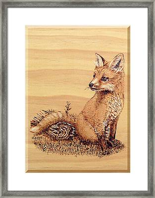 Fox Pup Framed Print by Ron Haist