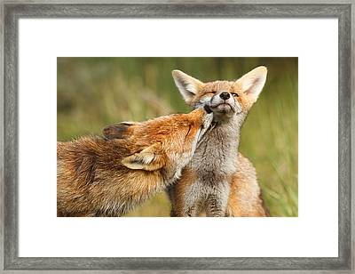 Foxy Love Series - But Mo-om Framed Print by Roeselien Raimond