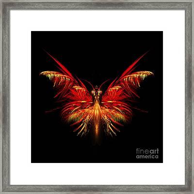 Fractal Butterfly Framed Print by John Edwards