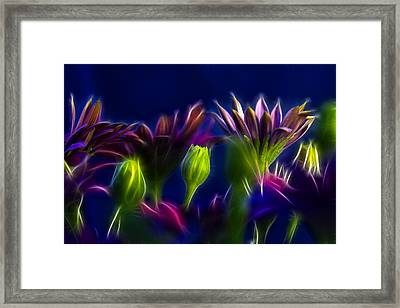 Fractals Framed Print by Stelios Kleanthous