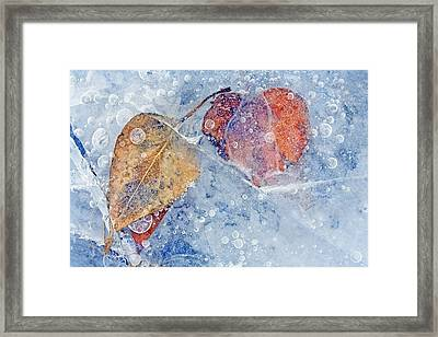Fractured Seasons Framed Print by Mike  Dawson