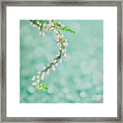Fragile Beauty Framed Print by Sven Pfeiffer
