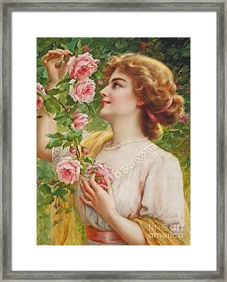 Fragrant Roses Framed Print by Emile Vernon