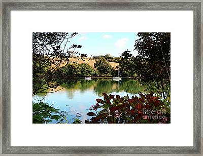Framed By The Trees Framed Print by Terri Waters