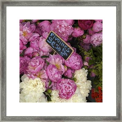 France, Paris Peonies Flowers Framed Print by Keenpress