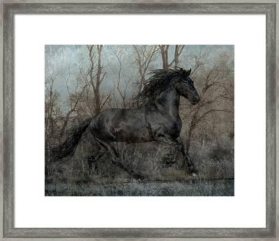 Free II Framed Print by Jean Hildebrant